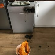 Dishwasher that caught fire was on the product recalls list but had not been registered
